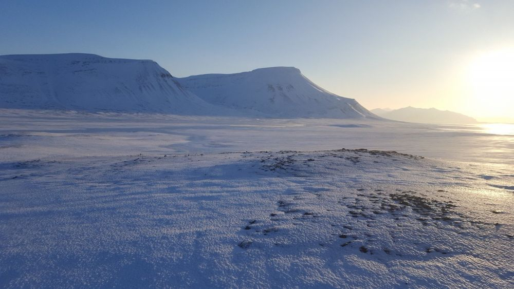 paesaggio artico Longyearbyen