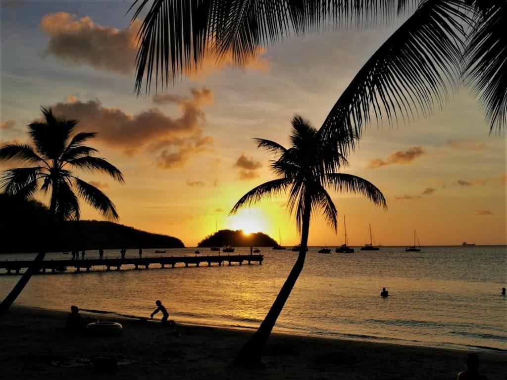 Palme e tramonto sul mare