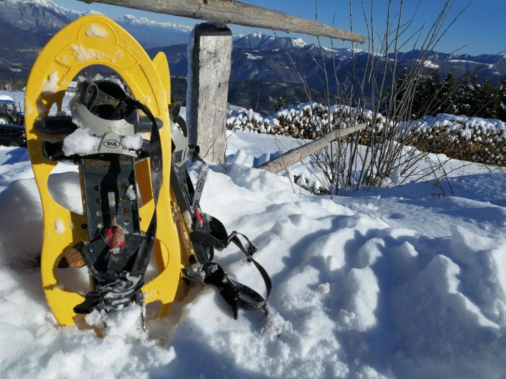 Ciaspole sulla neve