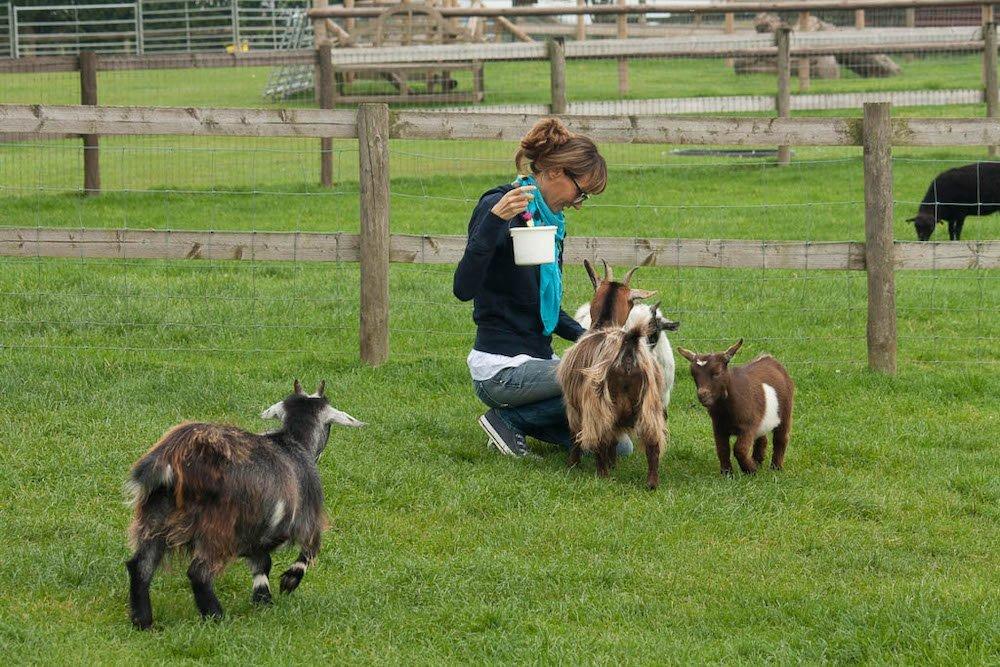 Simona Marri, blogger di Una soffitta per due, in una fattoria in Inghilterra